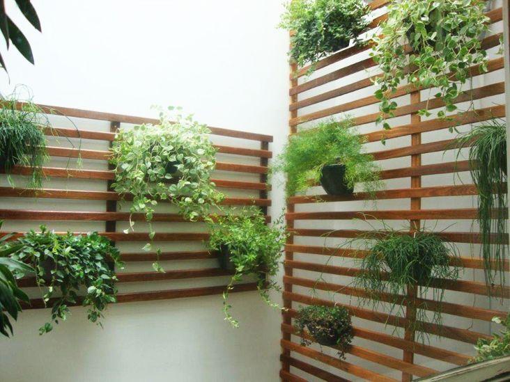 Pequenos jardins traga a natureza para dentro de sua casa  Itucom